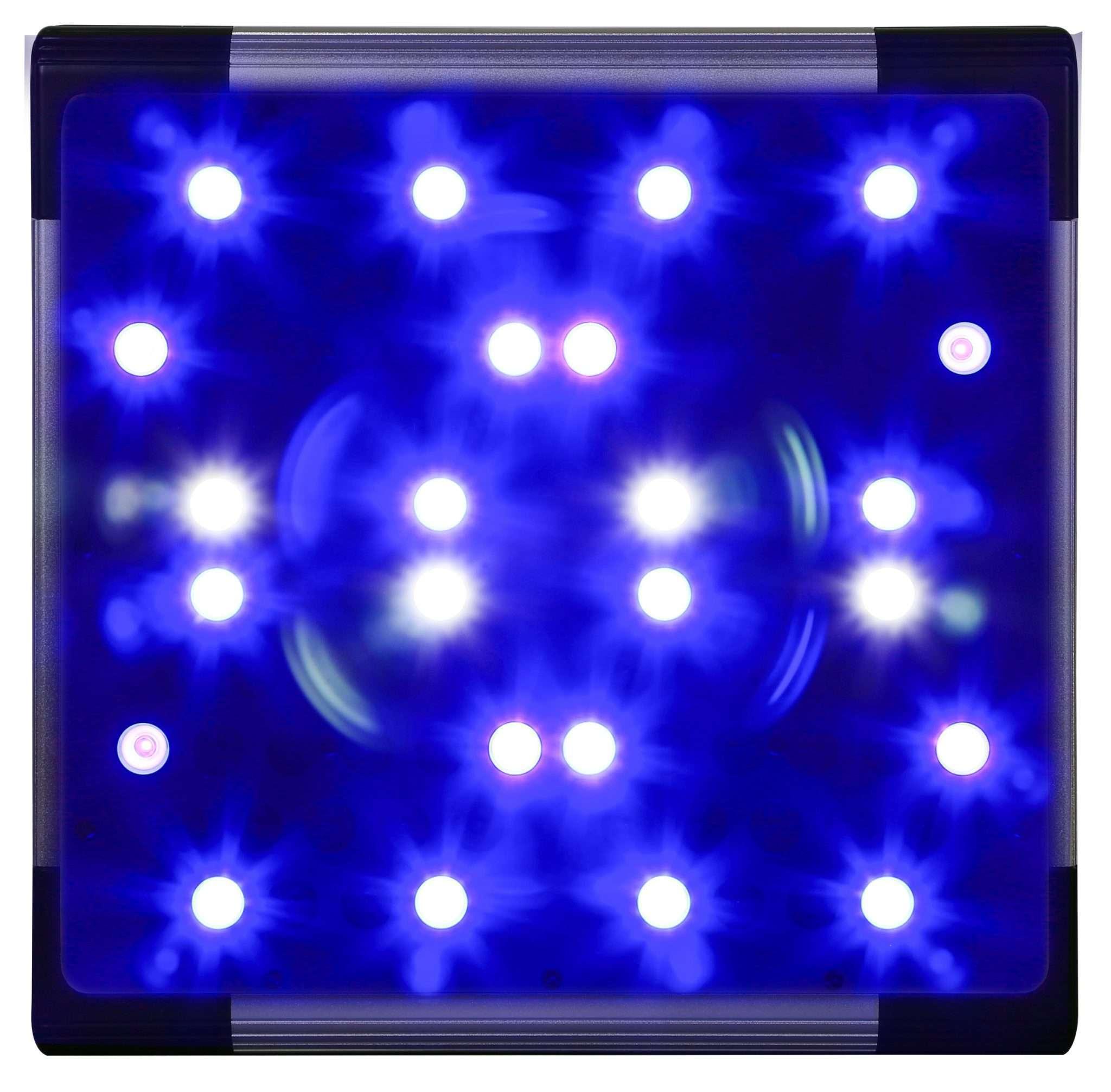 AgroLED growlight blue spectrum