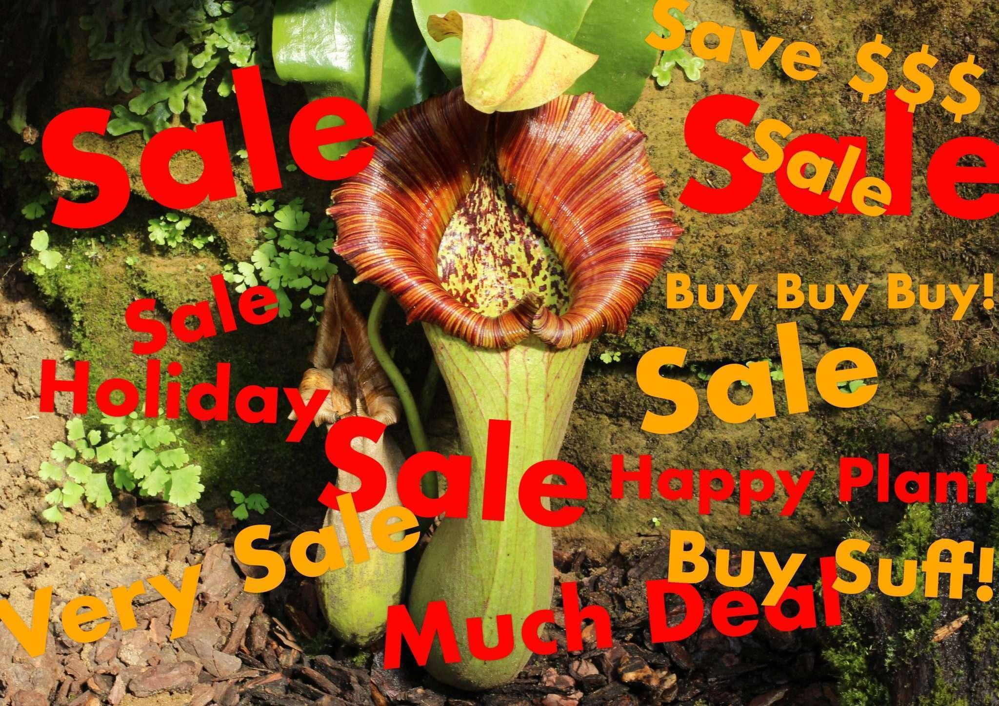 Carnivorous plant sales