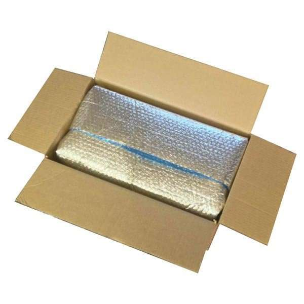 insulated box for plant shipping