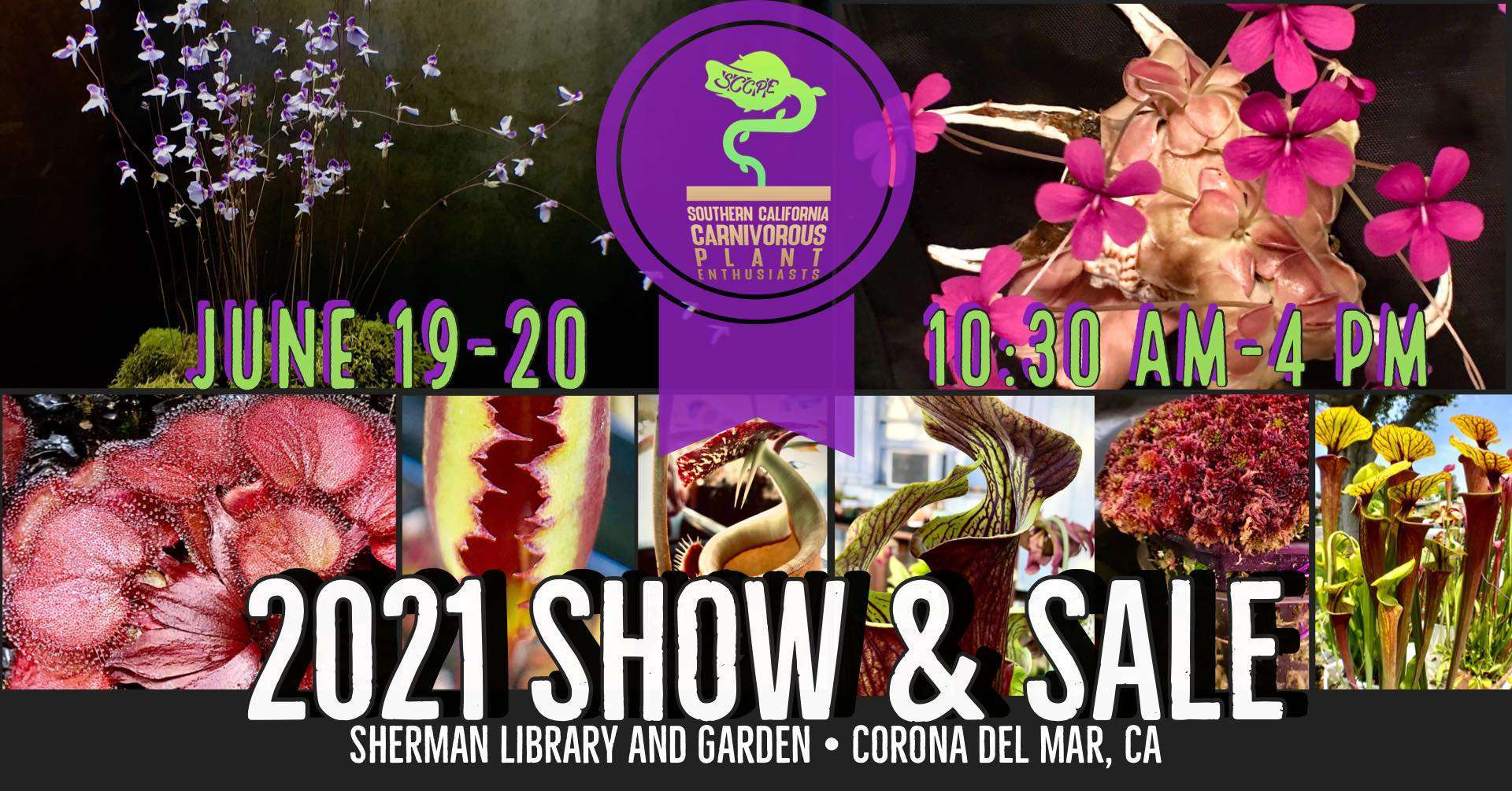 SCCPE Show and sale